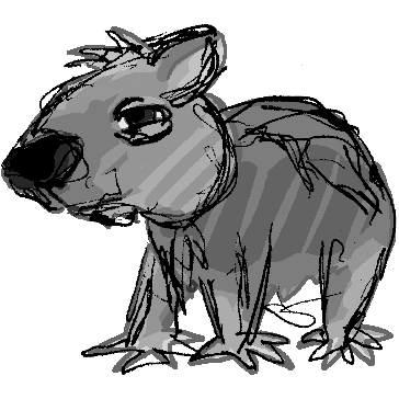 shaggy wombat sketch
